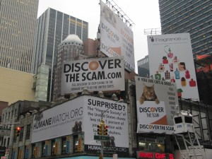DiscoverBillboardNYC2-300x225