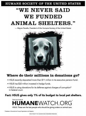 Animal Campaign: How We Beat the Beltway